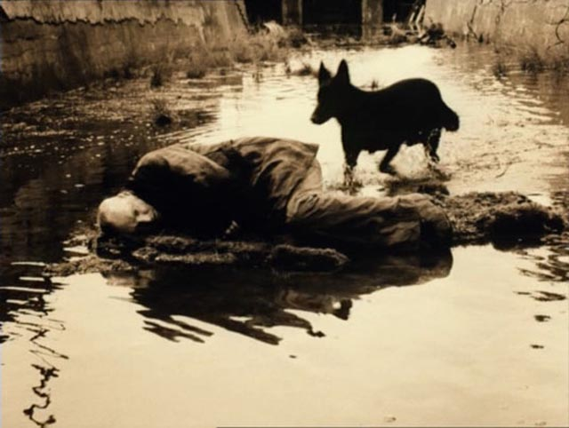 Lost in the Zone: Tarkovsky's Stalker (1979)