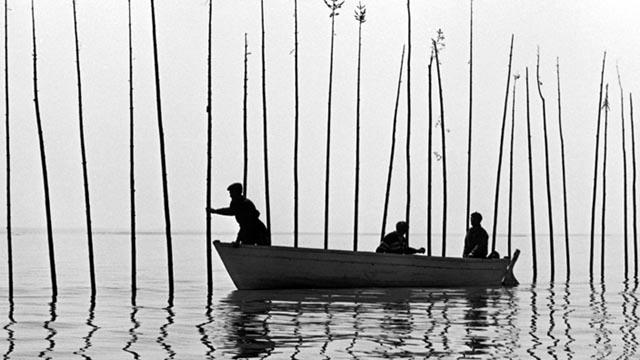 Pour la suite du monde (1963): Michel Brault, Marcel Carriere and Pierre Perrault