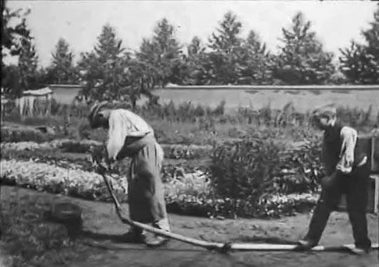 lumiere_gardener