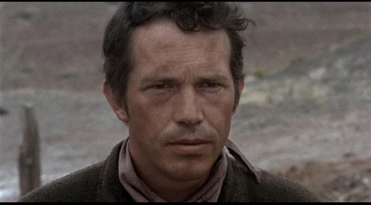 Warren Oates as Willett Gashade