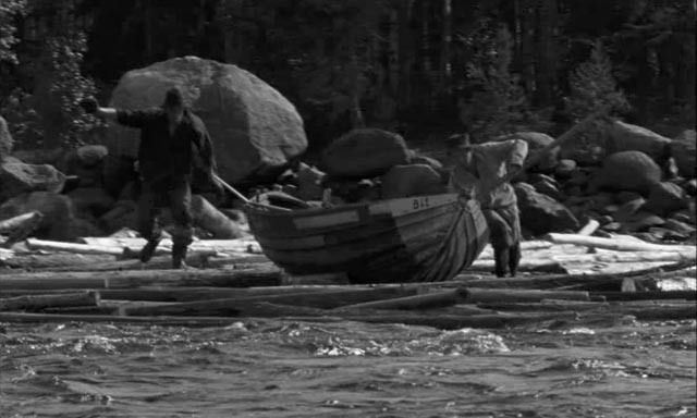 Loggers rescue a boat from the fast-running river, a documentary moment caught by Troell