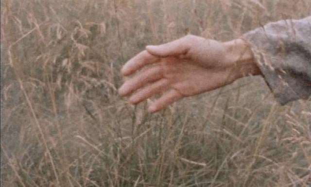 An image since echoed by Tarkovsky, Malick and others
