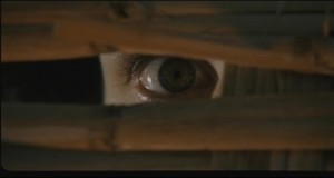 The unseen voyeur as a source of danger: Mario Bava's Bay of Blood (1971)
