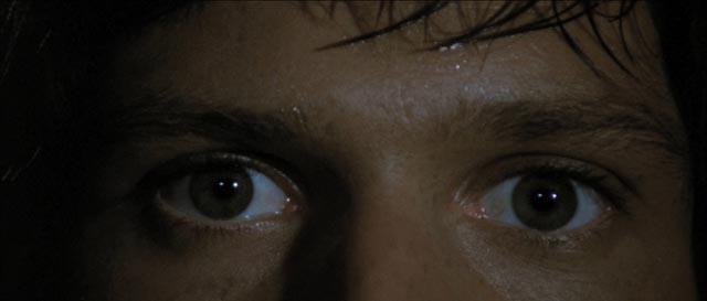 Michael Brandon in Dario Argento's Four Flies on Grey Velvet (1971)