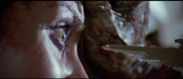 "Fulci's legendary moment of ""eye horror"" in Zombie Flesh Eaters (1979)"
