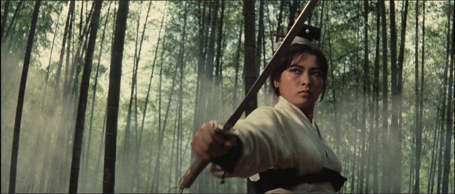 Hsu Feng as Yang Huizhen, the imposing heroine of King Hu's masterpiece A Touch of Zen (1971/75)