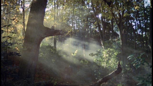 The atmospheric landscape surrounding Helen's haunted country house in Jose Ramon Larraz's Symptoms (1959)