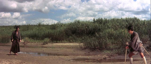 The entire Zatoichi series features often spectacular wide-screen compositions