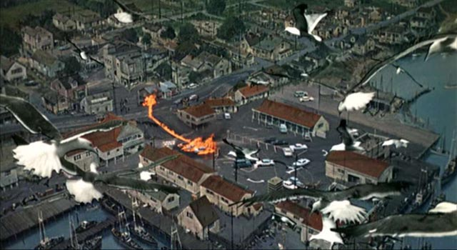 A bird's eye view of Bodega Bay under siege in Alfred Hitchcock's The Birds (1963)