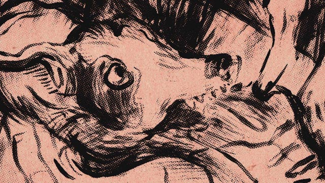 An image of Lolabelle from Laurie Anderson's animation which opens Heart of a Dog (2015)