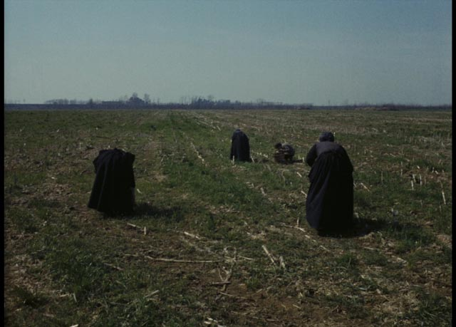 Peasants working the fields in Ermanno Olmi's The Tree of Wooden Clogs (1978)