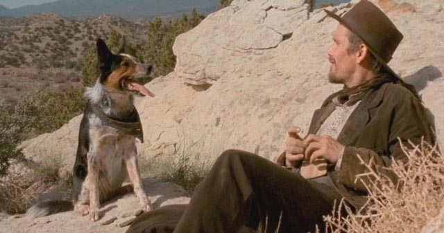 Ethan Hawke and a very talented dog in Ti West's In a Valley of Violence (2016)