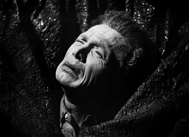 Max (Gérard Herter) finally meets his inevitable fate in Mario Bava & Riccardo Freda's Caltiki: The Immortal Monster (1959)