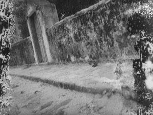 Nitrate decay in Mario Peixoto's Limite (1931)