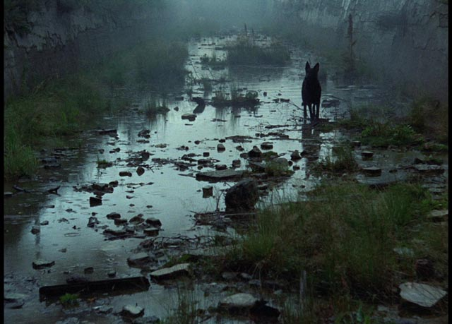 a review of the film andrey arsenevitch tarkovsky How could it be otherwise, given that the movie hails from england  life of  andrei arsenevich, is wide of the mark it is true that tarkovsky,.