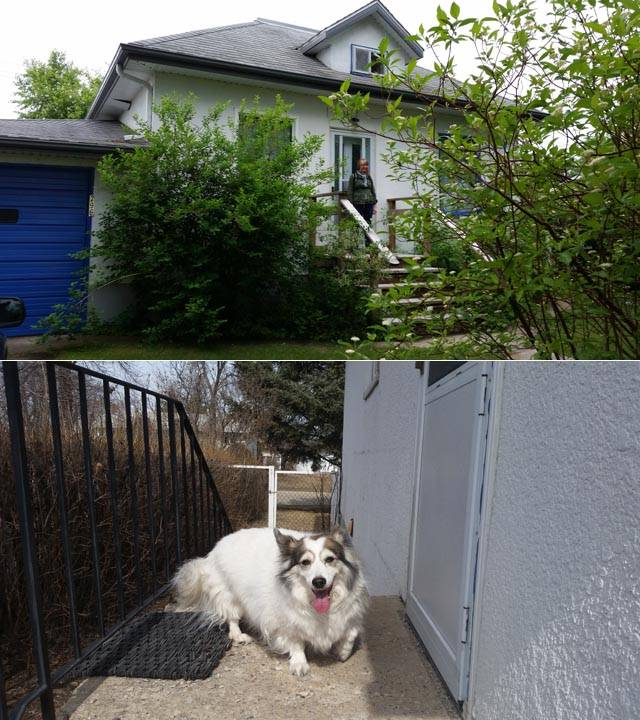 The second house in Neepawa, and my mother's dog Nell at the back door