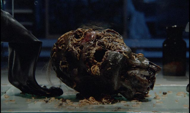 Insects rule in Dario Argento's Phenomena (1985)