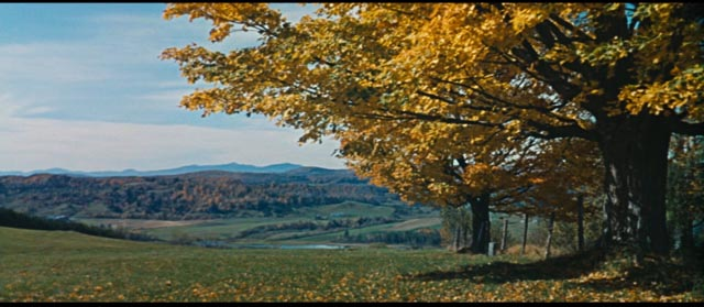 An idyllic landscape conceals sordid behaviour in a sedate New England town in Mark Robson's Peyton Place (1957)