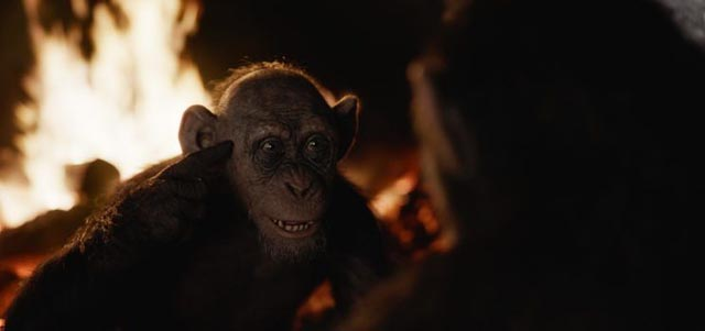 Steve Zahn as Bad Ape in Matt Reeves' War for the Planet of the Apes (2017)