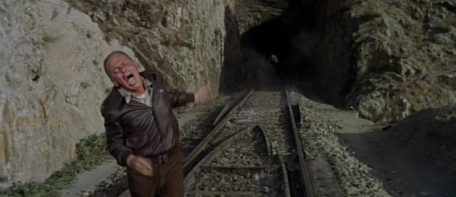 Col. Ryan, having masterminded the escape, doesn't make it himself in Mark Robson's Von Ryan's Express (1965)