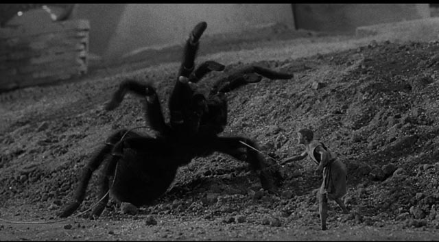 Suburban basement becomes alien landscape in Jack Arnold's The Incredible Shrinking Man (1957)