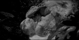 A pod gives birth to a duplicate in Don Siegel's Invasion of the Body Snatchers (1956)