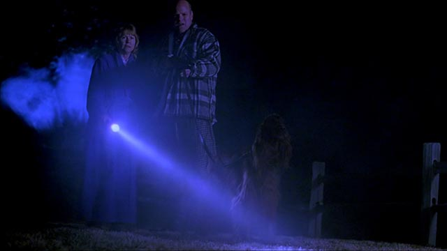 Farmer Hoss (Rex Linn) and his wife (Dee Wallace Stone) see something nasty in the night in Ryan Schifrin's Abominable (2005)