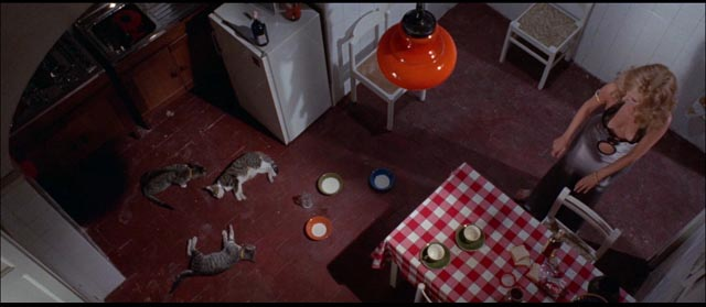 You know it's bad when the killer poisons the cats: Umberto Lenzi's Seven Blood-Stained Orchids (1972)