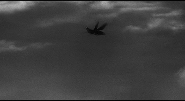 The bug in flight looks quite different from its close-ups in Nathan Juran's The Deadly Mantis (1957)