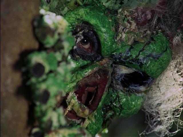 A plant-human hybrid in Eddie Romero and Gerardo De Leon's Mad Doctor of Blood Island (1969)