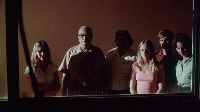 Witnesses at an execution in J.G. (Pat) Patterson's The Electric Chair (1975)