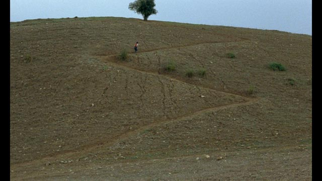 This hill, this tree, this zigzag path connect the three films of Abbas Kiarostami's The Koker Trilogy (1987-94)