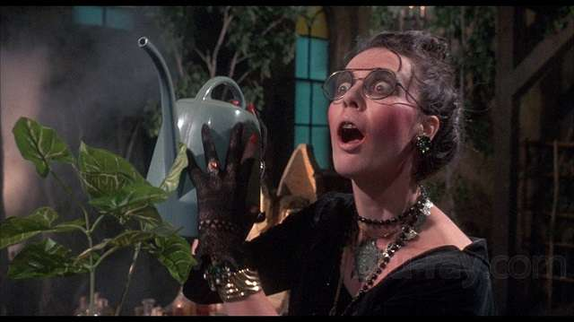 Deborah Reed as the demented Goblin Queen in Claudio Fragasso's Troll 2 (1991)