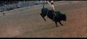 Junior (Steve McQueen) gets his fleeting moment of glory in Sam Peckinpah's Junior Bonner (1972)