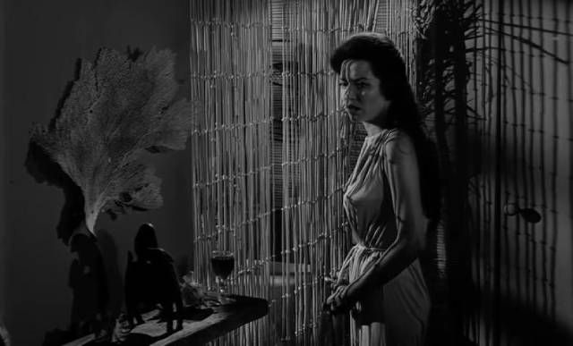 Mora (Linda Lawson) is haunted by a belief that her love is deadly in Curtis Harrington's Night Tide (1961)