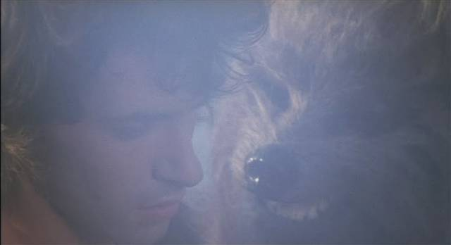Ilias (Andrea Occhipinti) meets Ocron (Sabrina Sellers)'s dog soldiers in Lucio Fulci's Conquest (1983)