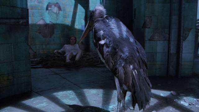 A menacing bird emerges from the well in the cellar in Michele Soavi's The Sect (1991)