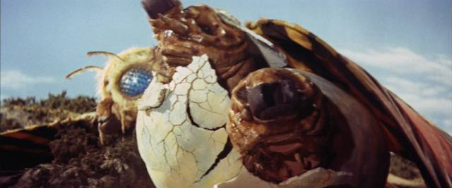 Mothra's egg hatches with twin larvae in Ishiro Honda's Mothra vs Godzilla (1964)