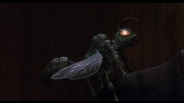 A random giant bug shows up in Night Train to Terror (1985)