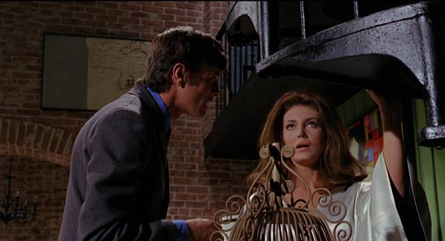 Michael Sarrazin and Gayle Hunnicut plot murder in David Lowell Rich's Eye of the Cat (1969)